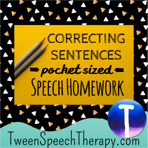 Correcting Sentences Pocket Sized Speech Homework
