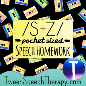 S and Z Pocket Sized Speech Homework