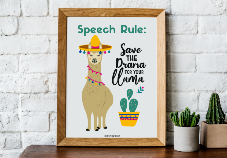 speech room decor save the drama for your llama